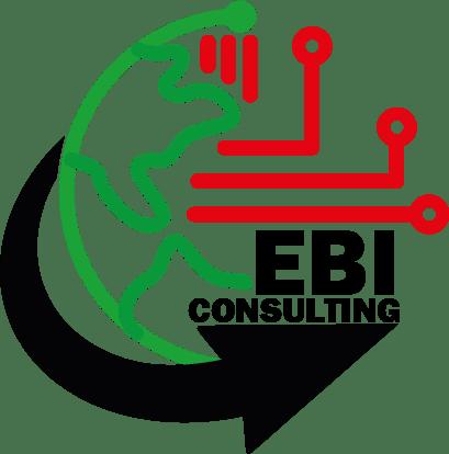 EBI Consulting LTD